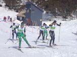 2014_AUS_Sprint_F_Q-Final-4-Men-1